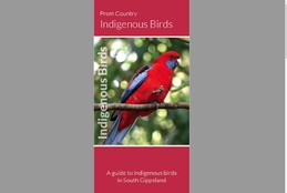 Click to download brochure - Prom Country indigenous birds brochure