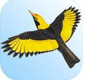 Morcombe and Stewart Birds of Australia - $29.99 full version